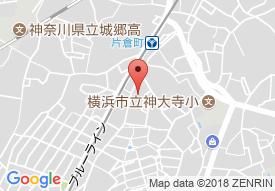 ラルーチェ横浜 へーベルVillage横浜 片倉