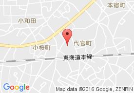 ミモザ茅ケ崎