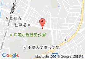 メディクスケアホーム松戸(旧名称:ブリスイン松戸)