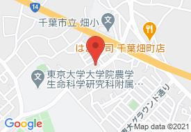 あんしんファミリア新検見川